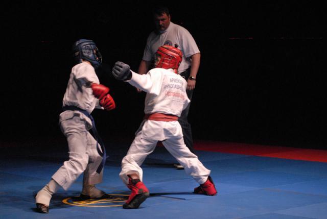 Приглашаем Вас посетить турнир по Армейскому рукопашному бою!  (5turnir-15.jpg)